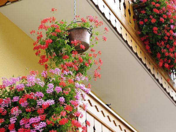 Zimmerei Holzbau Balkon Terrasse Bauernhaus Landhaus Handwerk